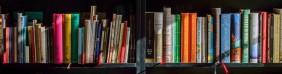 Vida en libros