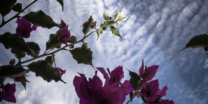 Bajo la superficie del cielo por Rhafhaell