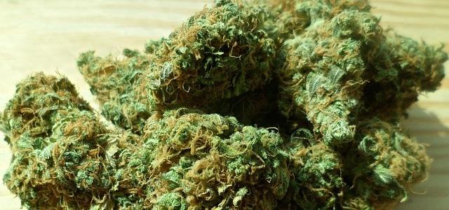 Rhafhaell - cannabis marihuana
