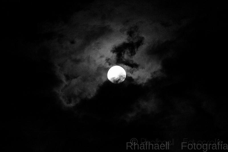 Luna mía